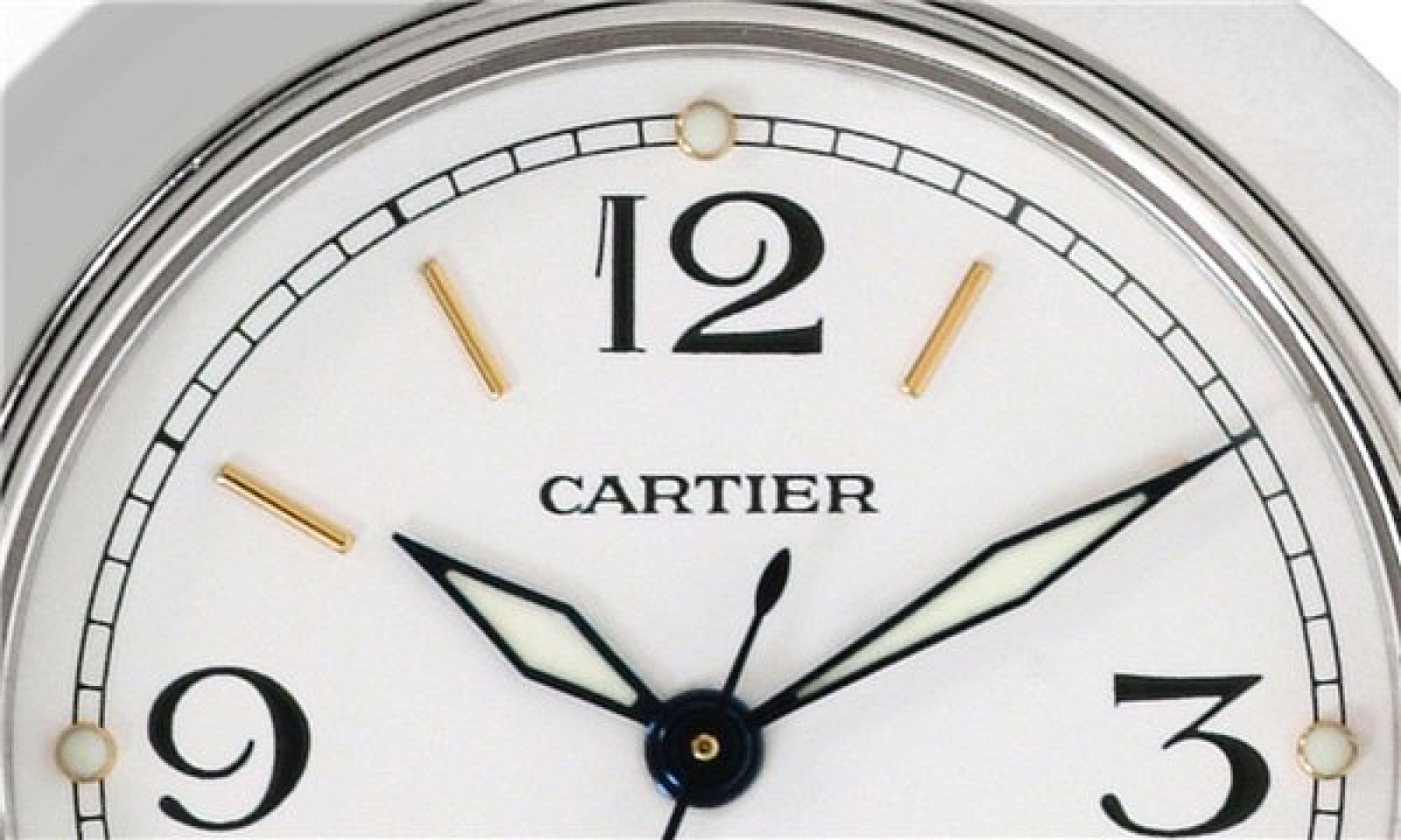 White Diamond Dial Cartier Pasha W31055M7